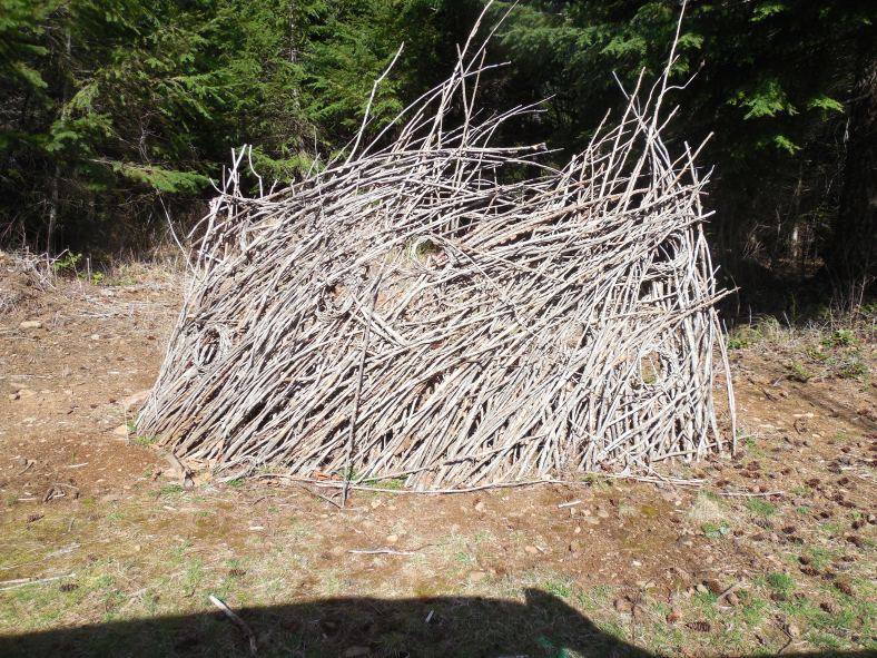Outdoor School hired a person to teach branch art several years ago at Camp Howard.  Still standing - I really like it.